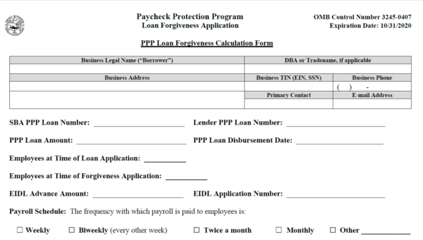 PPP Loan Forgiveness Form