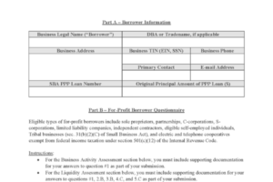 PPP Form 3509 Loan Necessity Questionnaire